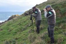 Natura 2000 : suivre et évaluer pour mieux gérer